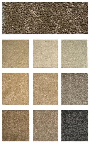 new tradition carpet flooring