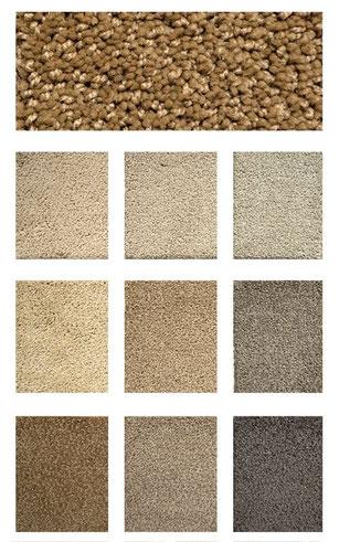 Fashion Point carpet flooring