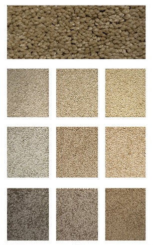 belmont carpet flooring