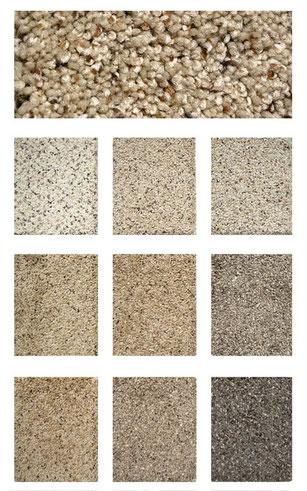 Newport carpet flooring
