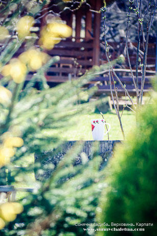 Сад в горах. Сонячна садиба, Верховина, Карпати.