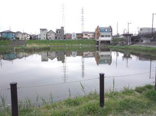 自宅付近の池