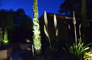 jardin provencal Arcachon