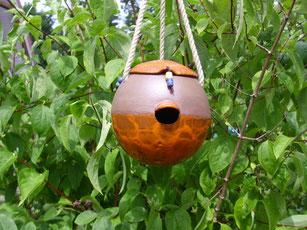Vogelnisthöhle Orange und Braun