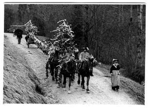 Luthern Bad, Tannenschleipfete um 1948, vorne rechts Moritz Amrein, Badegg