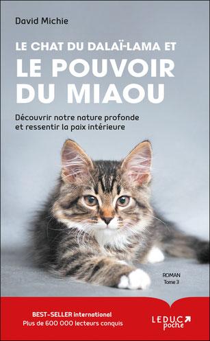 le chat du Dalai-Lama tome 3, Pierres de Lumière, tarots, lithothérpie, bien-être, ésotérisme