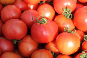 HMIPシュガートマト