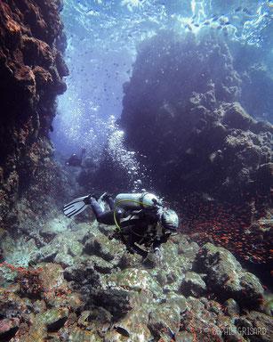 Dive, Pulau Weh