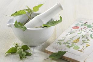 Salud-natural-fitoterapia-homeopatía-Farmacia-San-Mateo-Alicante