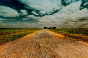 Feldweg unter weitem Wolkenhimmel II