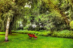 Rote Ruhebank steht im Park auf der Wiese unter einer Weide