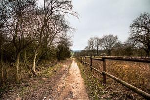 Spazierweg an der Ranch-Pferdekoppel mit Holzzaun
