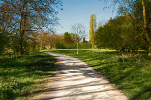 Weg im Park mit Wiesen und Bäumen im Frühling