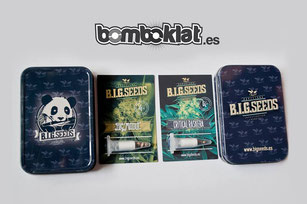 sorteo semillas marihuana big seeds 2015