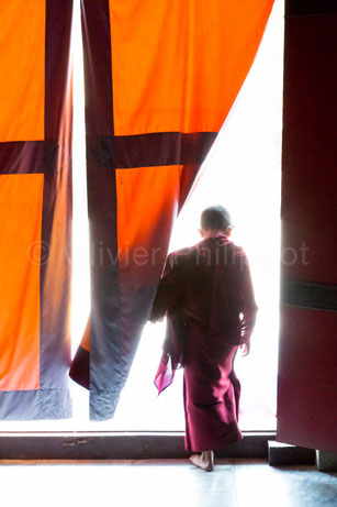 Olivier Philippot Photo - Népal - Kathmandu - Monastère Shechen
