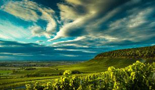 Weinanbaugebiet Franken: Beliebt bei Touristen