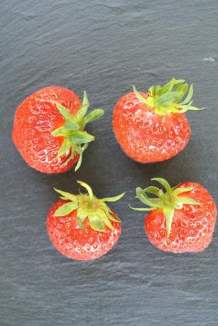 Erdbeeren für Erdbeer-Limes