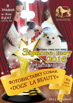 japanese shpitz spitz in Ukraine, dog show, Star Show 2016, Podolskiy regional center, Ukrainian Kennel Union, may, 2016, photo exhibition, Dogs` LA BEAUTY, japanese spitz photos, white dogs photos, dogs models Kiev Ukraine