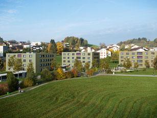 Neubau drei MFH | Adligenswil