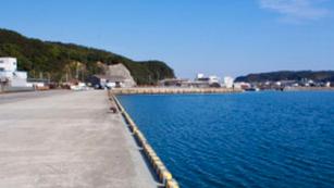 Taiji harbor