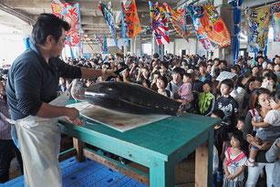 約50キロあるキハダマグロの解体ショーが行われた=18日午前、八重山漁協