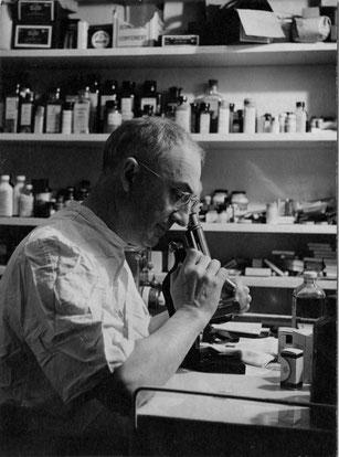 William Carlos Williams (1883-1963) in 1954.