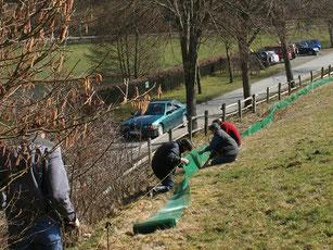 Ehrenamtliche Mitarbeiter des NABU beim Aufbau des Krötenzaunes in Bad Berleburg-Richstein.