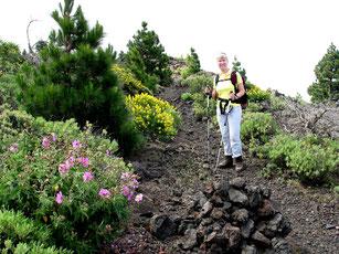 Aufstieg auf dem Kraterrand des Pico Birigoyo