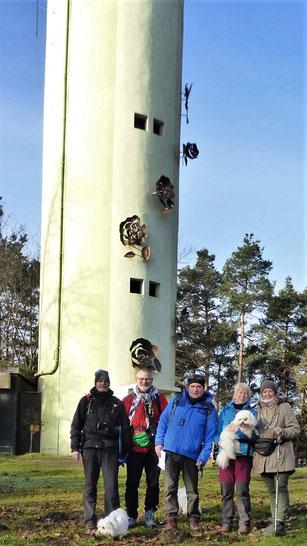 Oben am Stäffelsbergturm/Bad Bergzabern