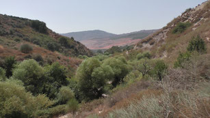 Iyon Valley