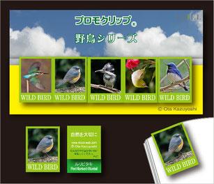 プロモクリップ(オリジナルクリップ)・野鳥シリーズ拡大