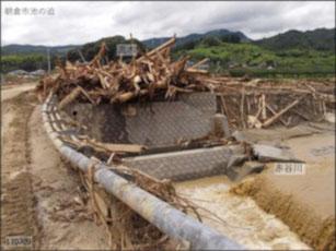 写真3 橋桁に残された流木