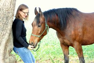 Harmonisches Zusammensein mit Pferden