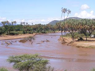 Safaris in Kenia zum Samburu Nationalpark