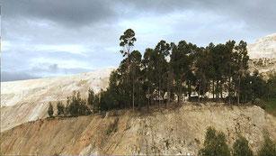 Lo que la Tierra no perdona: documental sobre los absurdos de la minería. Fotos: Escuela de Cine y Televisión de la U.N. ©