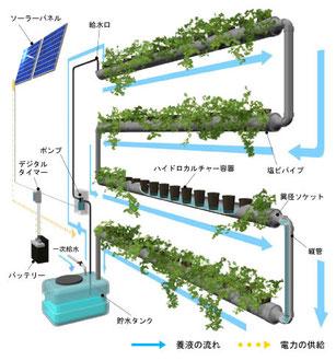 パイプ緑化の仕組み