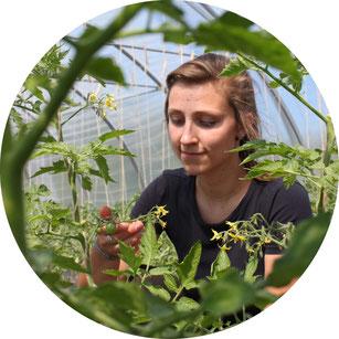 Foto Jessica und Tomatenpflanze