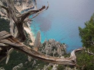 escursione in mountain bike in Sardegna, Ogliastra