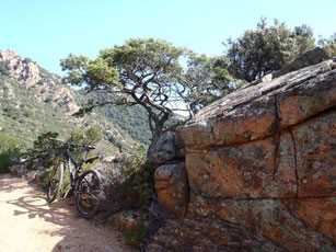 escursione in mountain bike in Sardegna, Ogliastra, Monti Ferru