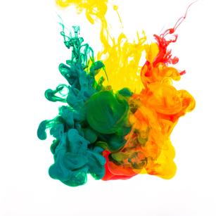 Les pigments de la Spiruline de Marc
