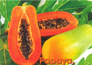 proprietà e benefici della papaya