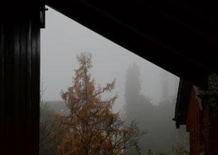 """20. November.2014 - Wetterbericht: """"Unterhalb von 800 Metern oft Nebel oder Hochnebel, darüber ziemlich sonnig"""""""
