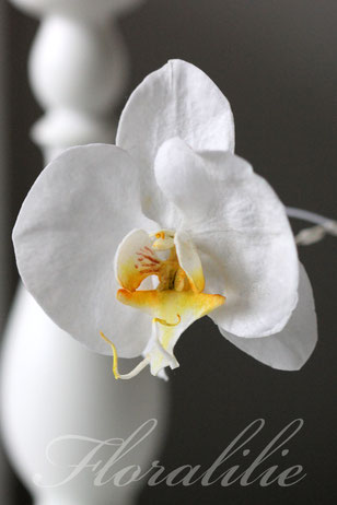 Wafer Paper Orchid | Floralilie Sugar Art