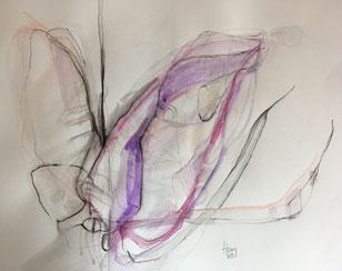 Orchid 1, Aquarell, 27cmx27cm, 2019