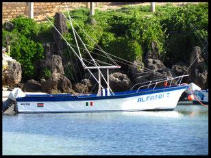 pesca altura watamu