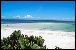 watamu beach spiaggia
