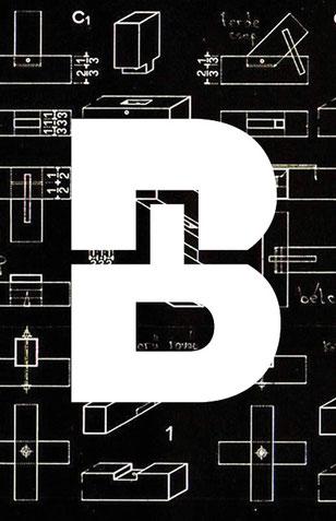 Bolzli Holzbau AG: Entwicklung Brand (Logo/Bildzeichen), Graphic Design by Lockedesign, Region Bern
