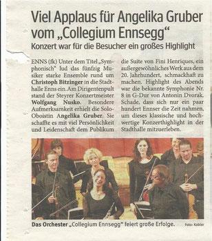 Collegium Ennsegg Symphonisch 2011
