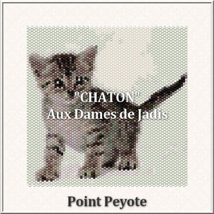 cat-chaton-picture-pattern-tapis-tapestry-miyuki-delica-seed beads-DIY-peyote-loom-even count-instant downlaod-auxdamesdejadis.com