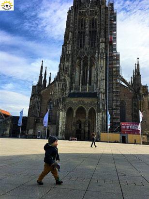 Samu vor dem Ulmer Münster